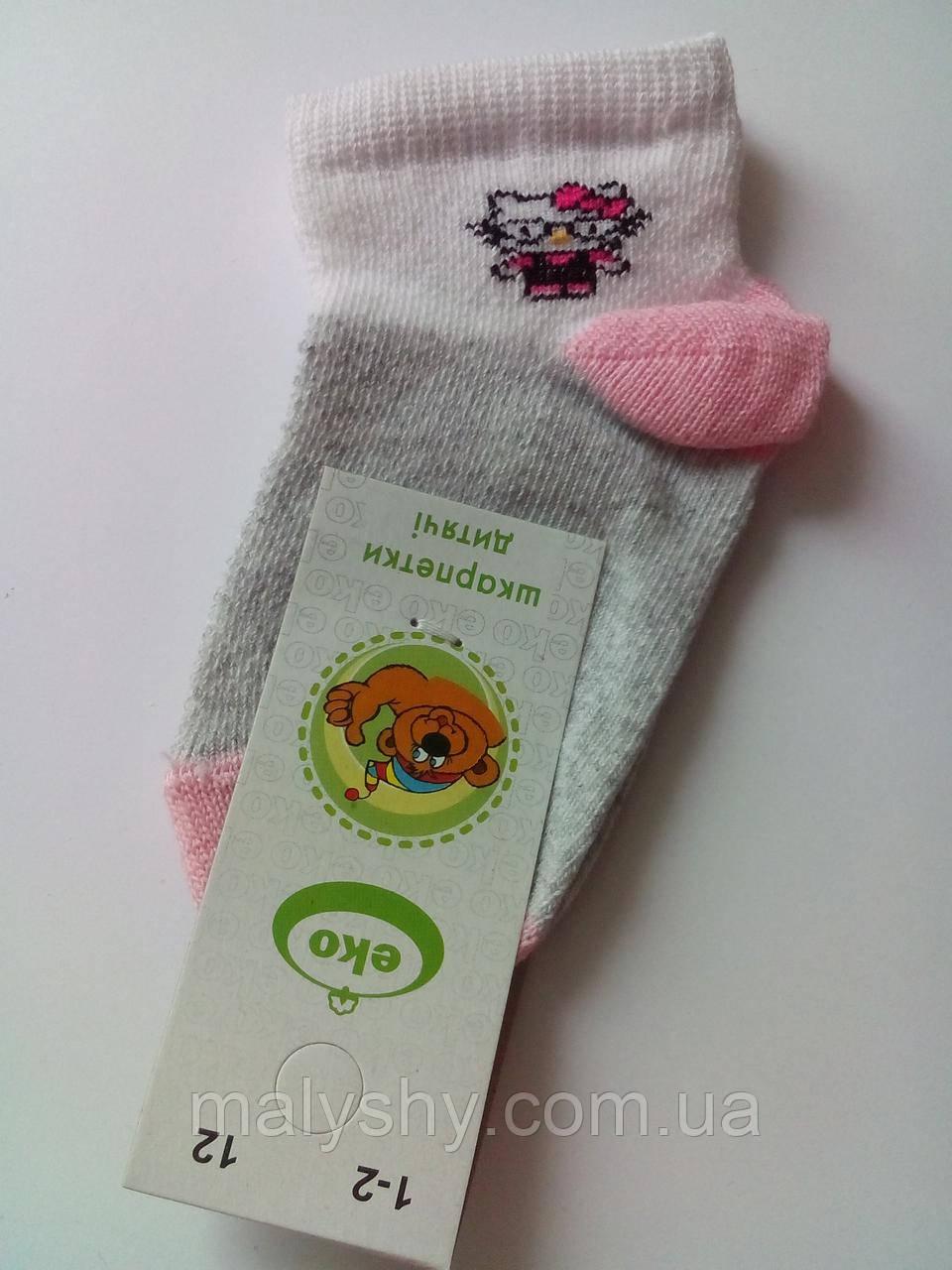 180d75a11bd42 Детские носки демисезонные - Еко 4131 р.12 (шкарпетки дитячі) - Интернет-