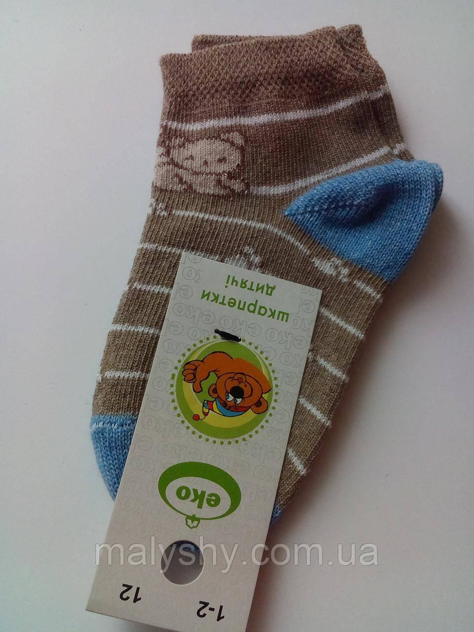 a7e3c0c06ff8e Детские носки демисезонные - Еко 4133 р.12 (шкарпетки дитячі) - Интернет-