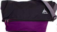 Спортивная сумка на плечо ONEPOLAR (ВАНПОЛАР) W5637-violet
