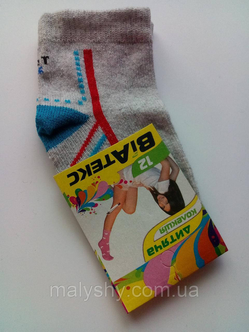 Детские носки демисезонные - ВиАтекс р.12 (шкарпетки дитячі, ВіАтекс)