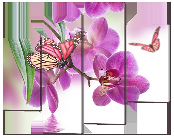 Модульная картина Розовая орхидея и бабочки