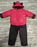 Теплый костюм демисезонный детский Сердечки (9 мес-2,5 лет), фото 2