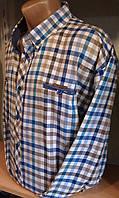 Мужская рубашка большого размера  батал с длинным рукавом полупритал BAGARDA клетка Одесса