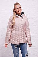 Куртка 17-62, фото 1