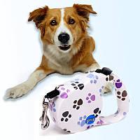 Поводок Рулетка для Собак с Кнопочным Блокиратором Длины 5 м Retractable Dog Leash