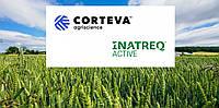 Евросоюз одобрил инновационный фунгицид Corteva