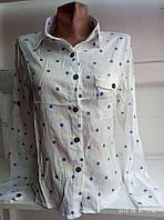 Жіноча блуза норма (р. S,M. L.)