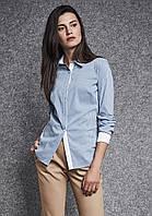 Женская рубашка в мелкую полоску голубого цвета с длинным рукавом. Модель 260021 Enny, осень-зима 2019