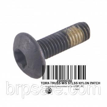 Болт крепления Torx-truss M/S stlss nylon