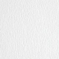 Картон цветной для пастели Elle Erre 00 bianco 70х100 см 220 г/м.кв. Fabriano Италия