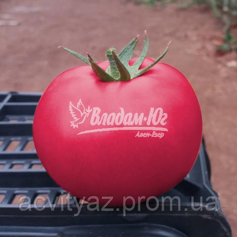 Семена томата Пинк Кристал F1, 250 семян