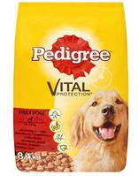 Корм PEDIGREE (Педигри) для взрослых собак говядина/птица, 8,4 кг