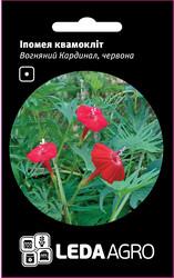 Семена ипомеи Огненный Кардинал, 0,5 гр., квамоклит красная