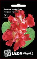 Семена ипомеи Император, 0,2 гр., махровая красная