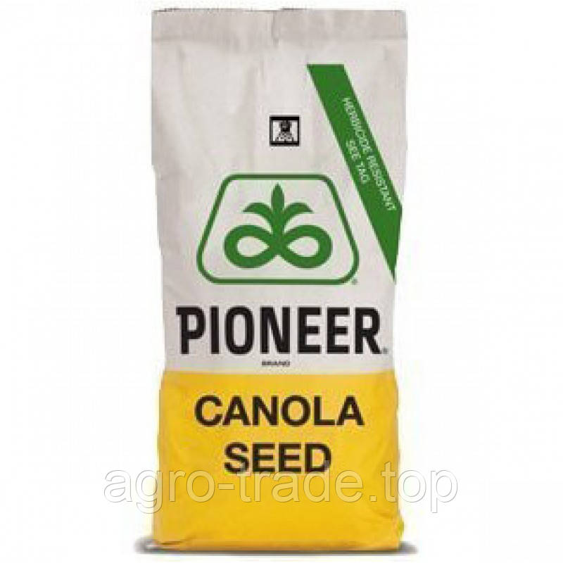 Семена рапса, Пионер ПТ234  (Pioneer  РТ234)