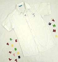 Рубашка подростковая с длинным рукавом, 13-16 лет, молочный