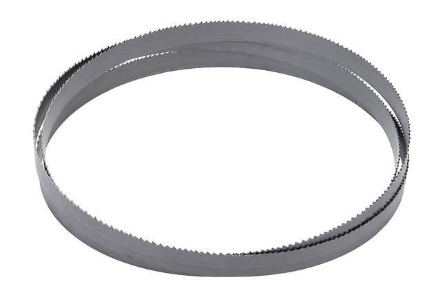 Пильная полоса BiFlex 1638 x 13 x 0.65 - Vario 6/10 ZpZ, фото 2