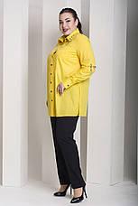 Желтая стильная рубашка больших размеров Экватор, фото 2