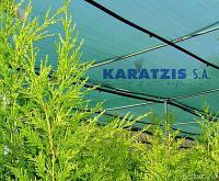 Сетка затеняющая 50% (Греция) 50*4м  зеленая, фото 1