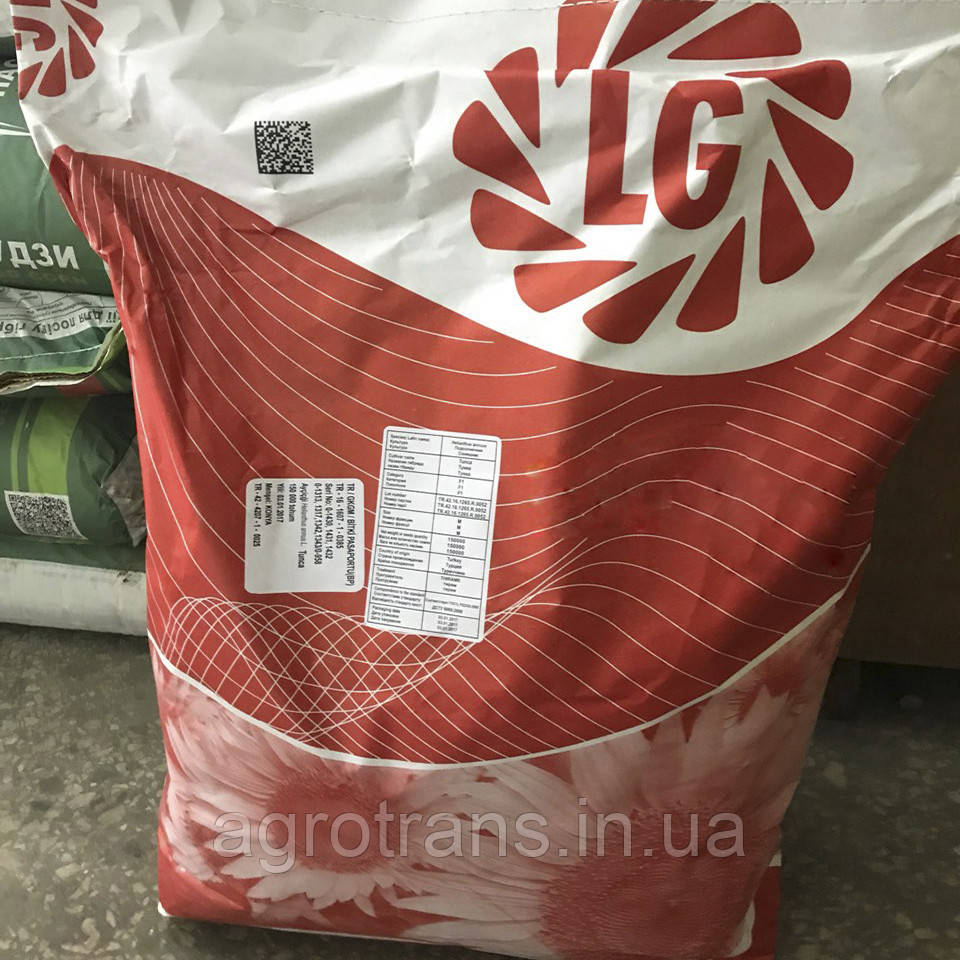 Семена подсолнечника Limagrain, Goldsun