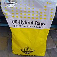 Семена рапса, Лембке, Visby