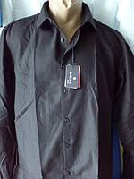 Черная рубашка с длинным рукавом BAZZOLO