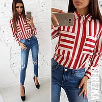 2a07b04b97a Рубашка Gucci в Украине. Сравнить цены