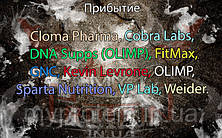 Поступление: Cloma Pharma, Cobra Labs, DNA Supps (OLIMP), FitMax, GNC, Kevin Levrone, OLIMP, Sparta Nutrition, VP Lab, Weider.