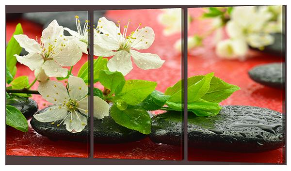 Модульная картина Белые цветы на камнях