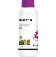 Инсектицид Цезарь ADAMA - 1 л, фото 2
