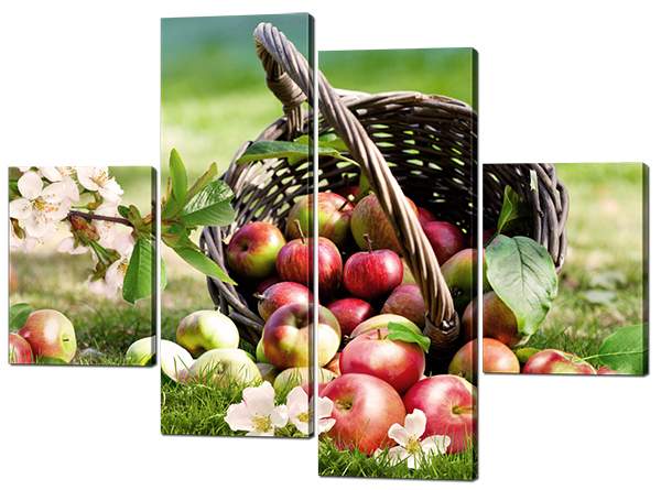 Модульная картина Яблоки и цветы на траве