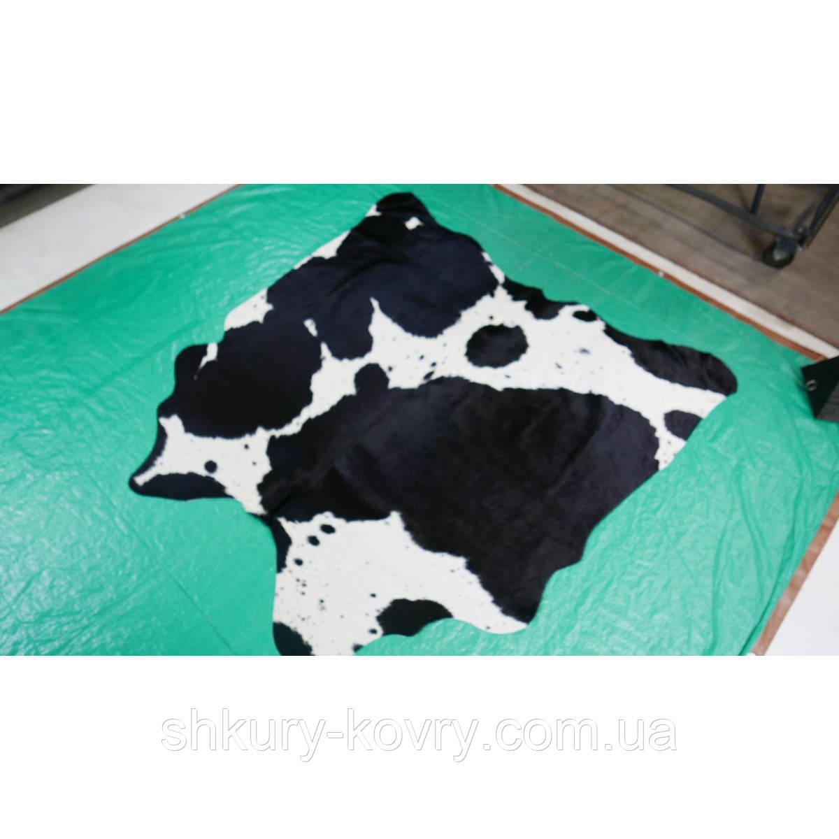Небольшая шкура коровы черно белая