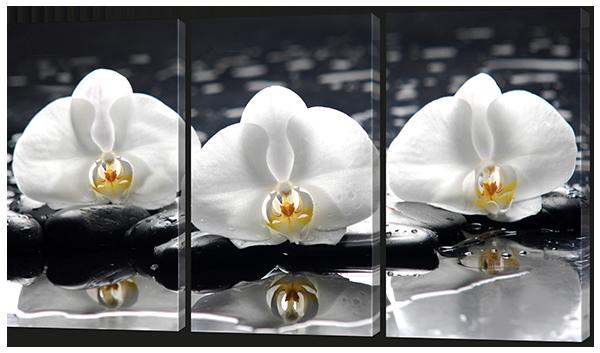 Модульная картина Белые лотосы