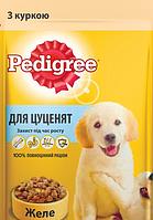 Влажный корм для щенков PEDIGREE (Педигри) курица в желе, 100 г