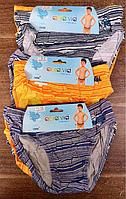Трусики для мальчиков оптом, Aura.via, 2-12 лет,  № GR501