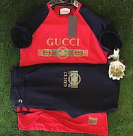 Спортивный костюм Gucci D3757 черно-красный летний
