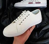 Кроссовки мужские Gucci D3773 белые, фото 1