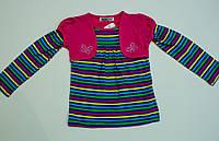 Модний реглан на дівчинку від 1 року до 6 років, фото 1