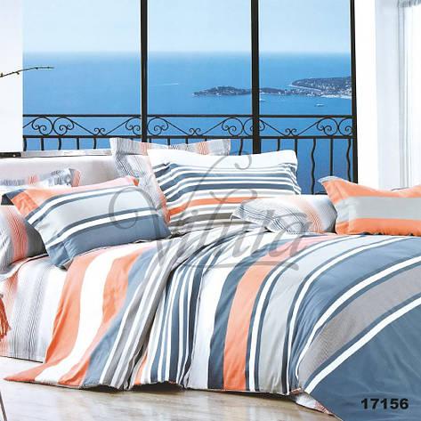 17156 Полуторное постельное белье ранфорс Viluta, фото 2