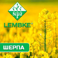 Семена озимого рапса Шерпа  (Lembke)