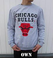 Свитшот Chicago Bulls большое лого