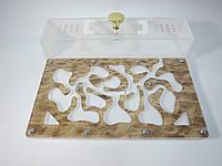 Акция Акриловая муравьиная ферма «Морской песок» + большая Колония Мессор Структор + 2 вида корма