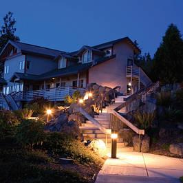 Садово-парковое, архитектурное, ландшафтное освещение.