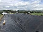 Пленка для прудов, водоемов ПВХ, IZOFOL Польша (1мм), ширина 2м , фото 7