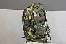 Тактический (военный) рюкзак Raid с системой M.O.L.L.E woodland (601 woodland), фото 3