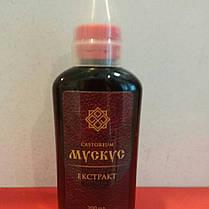 Мускус Экстракт жидкий - вытяжка с мускусной железы на водно-спиртовой основе, 200 гм, фото 2