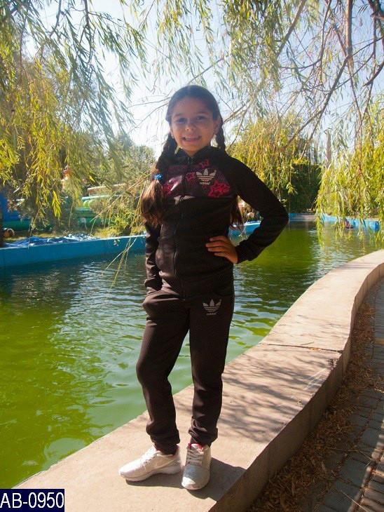 Спортивный костюм детский Звёздочки Adidas 34,36,38   ткань дайвинг 3 цвета