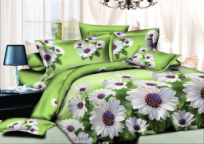 Двуспальный комплект постельного белья евро 200*220 хлопок  (10136) TM KRISPOL Украина, фото 2