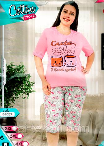 Пижама большие размеры футболка и капри хлопок разные цвета Cotton More № 59057, фото 2