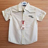 Рубашка нарядная для мальчиков короткий рукав 1-4 лет. Турция